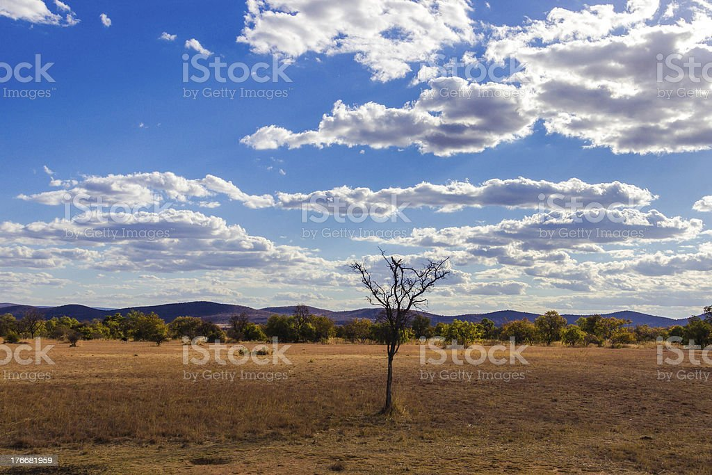 African skies royalty-free stock photo