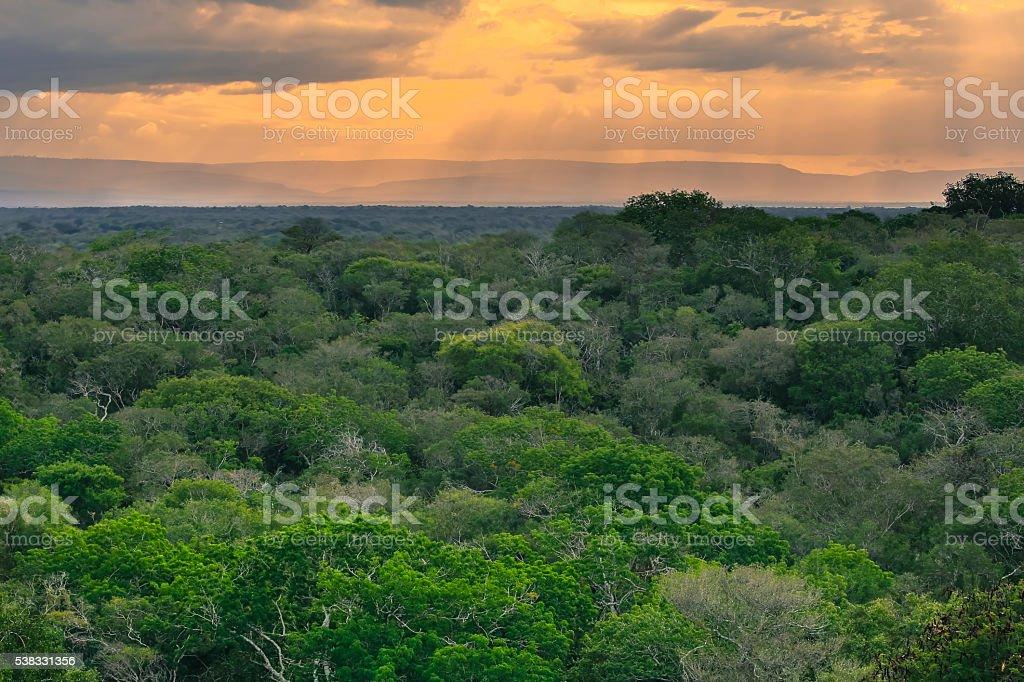 African Skyline stock photo
