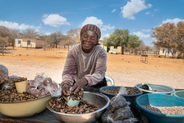African street vendors on the road selling raw peanuts
