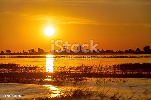 istock African sunset on Chobe river, Botswana 1173187675