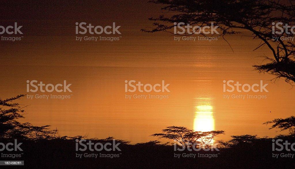 Pôr-do-sol africano foto royalty-free