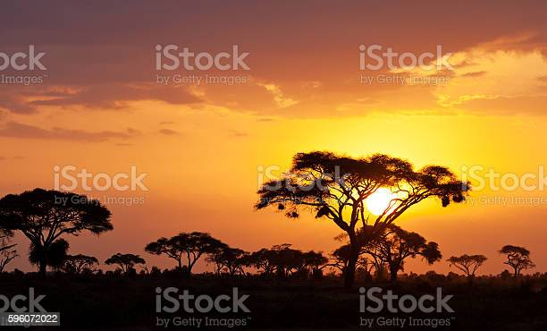 Photo of African sunset