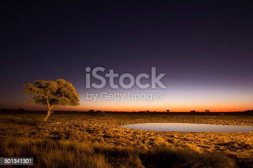 istock African Twilight 501341301