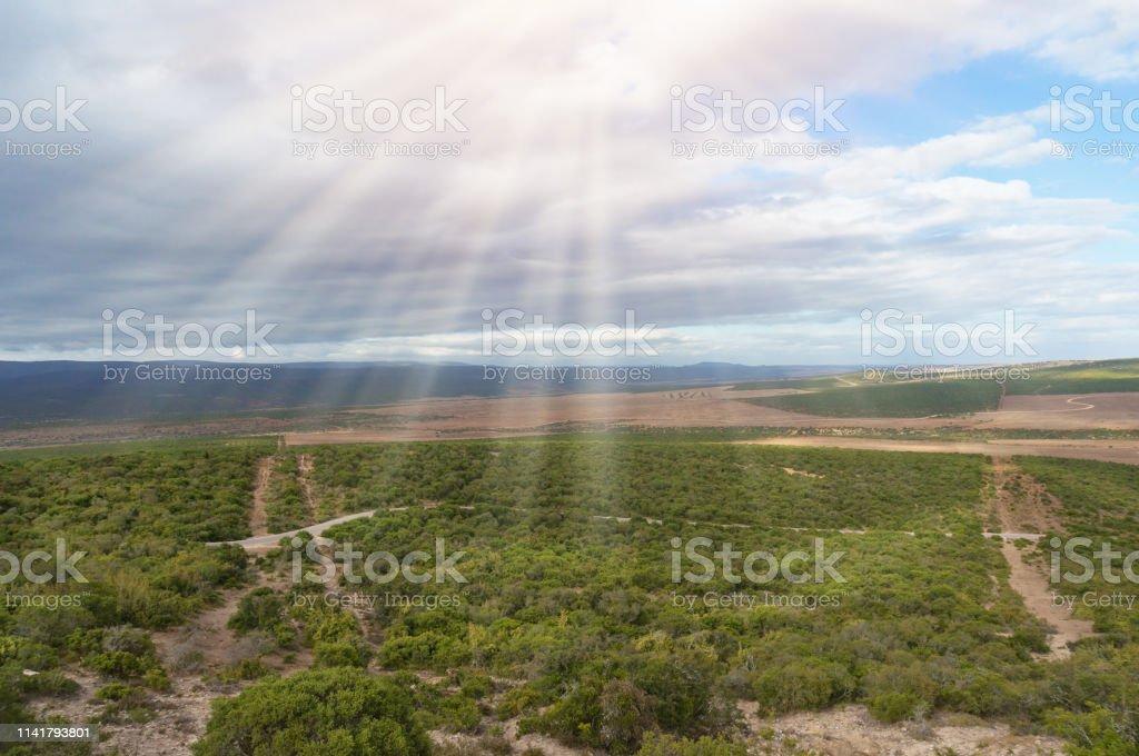 African vast landscape of bushveld and grassland stock photo