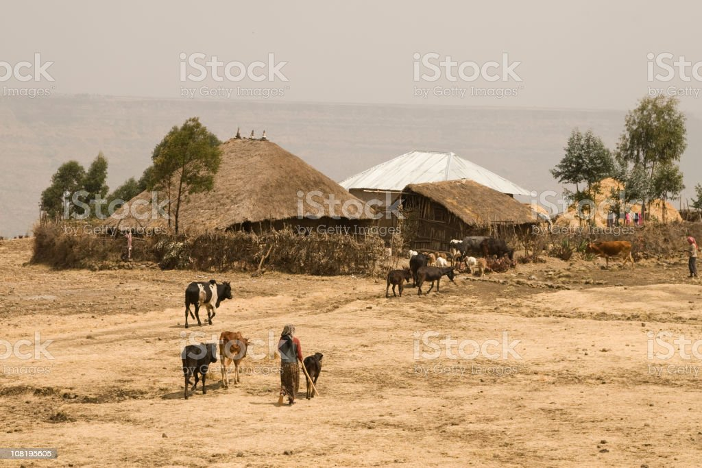 African way of farming in Ethiopia stock photo