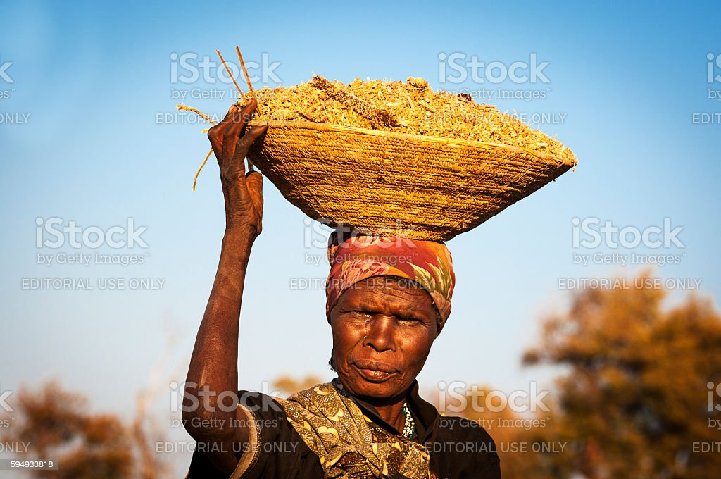 African woman balancing a basket in her head – Foto