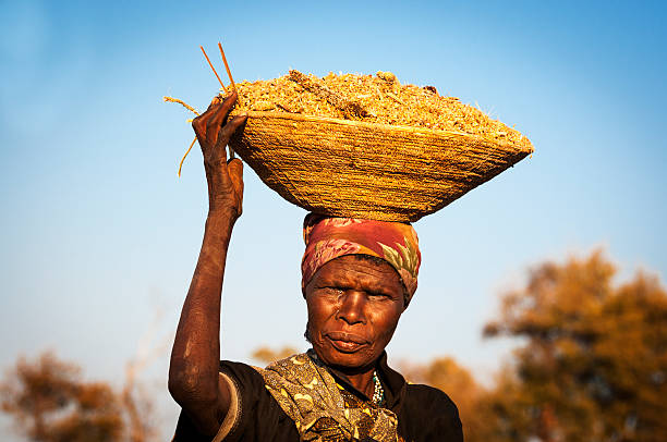 African woman balancing a basket in her head stock photo