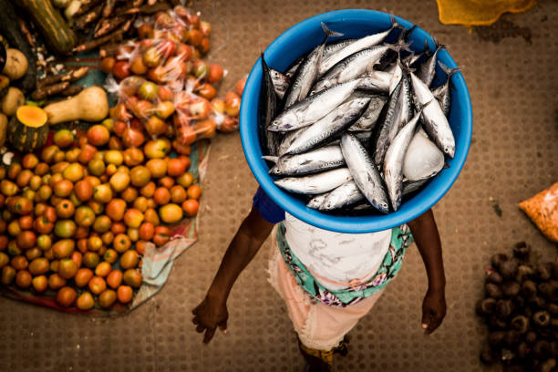 african woman carrying fish on her head - cabo verde imagens e fotografias de stock