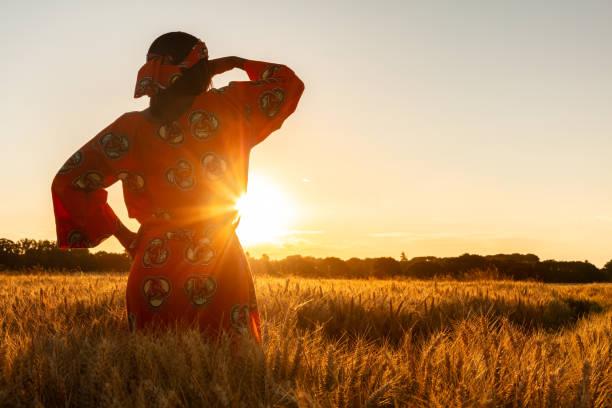 Mujer africana con ropa tradicional de pie, mirando, mano a los ojos, en el campo de cultivos de cebada o trigo al atardecer o al amanecer - foto de stock