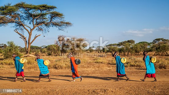 African women from Maasai tribe carrying water to their village, Kenya, Africa. African women and also children often walk long distances through the savanna to bring back containers of water. Some tourist camps cooperating with nearby villages and allow local people to use their water. Maasai tribe inhabiting southern Kenya and northern Tanzania, and they are related to the Samburu.
