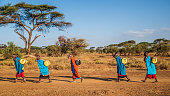 istock African women from Maasai tribe carrying water, Kenya, East Africa 1198845714