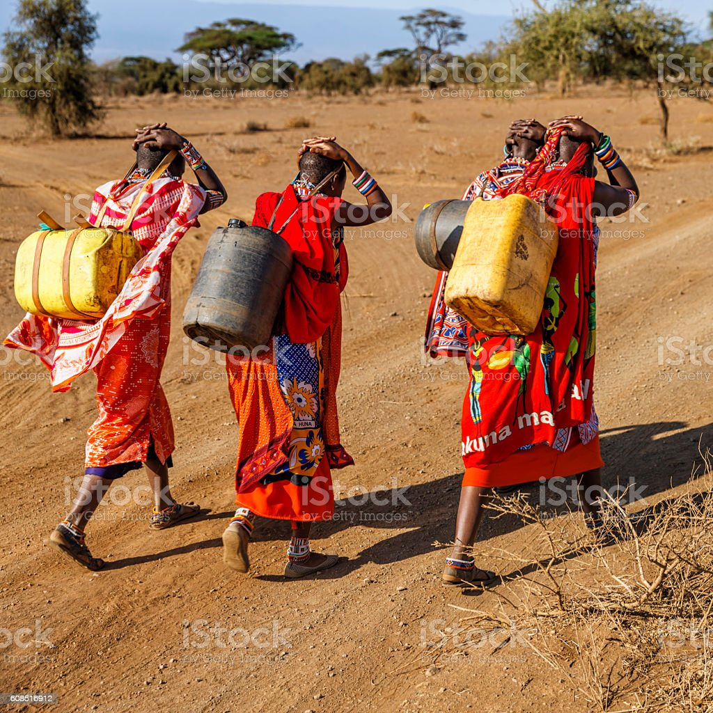 African women from Maasai tribe carrying water, Kenya, East Africa African women from Maasai tribe carrying water to their village, Kenya, Africa. African women and also children often walk long distances through the savanna to bring back containers of water. Some tourist camps cooperating with nearby villages and allow local people to use their water. Maasai tribe inhabiting southern Kenya and northern Tanzania, and they are related to the Samburu. Accidents and Disasters Stock Photo