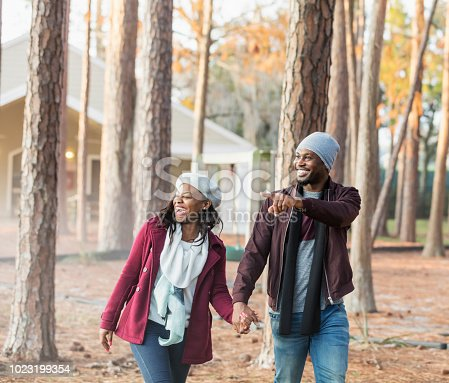 istock African-American couple, cabin in woods 1023199354