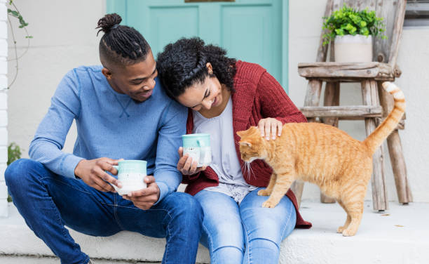 African-American couple on porch steps, petting cat stock photo