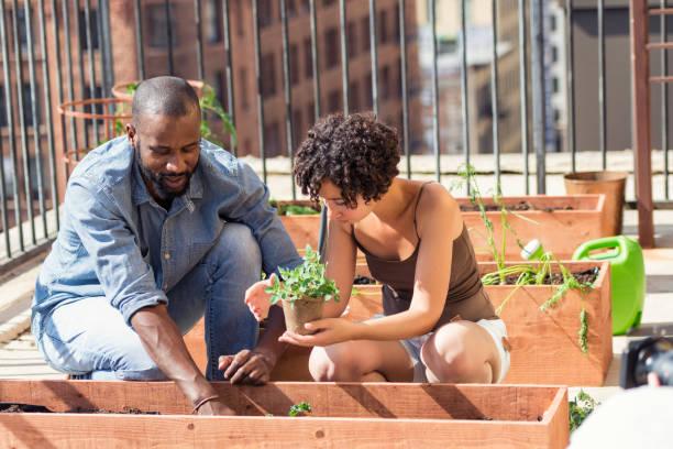 african-american paar dach garten - urbaner garten stock-fotos und bilder