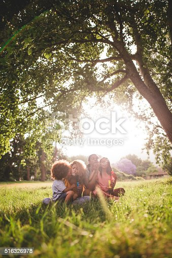 518064982 istock photo African-american family sitting in beautiful park blowing bubble 516326978