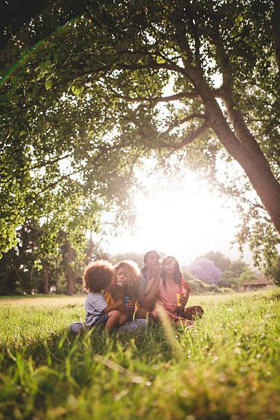 afrikanische amerikanische familie sitzt im wunderschönen park blasen blase - kinder picknick spiele stock-fotos und bilder
