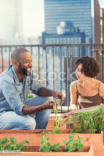 istock African-American friends gardening on the roof 623115172