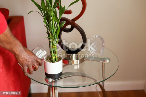 African-American man watering a house plant