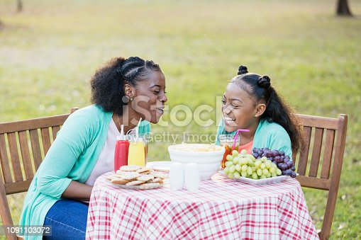 1091098026 istock photo African-American mother and daughter at cookout laughing 1091103072
