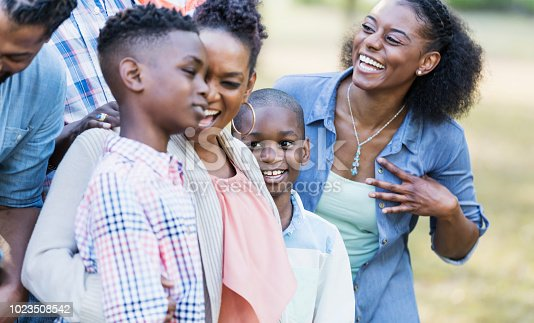 1091098026istockphoto African-American sisters and their sons 1023508542