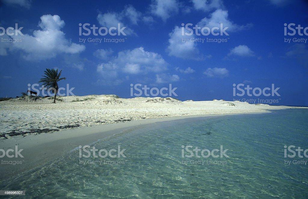 Afrika Tunesien Jerba stock photo