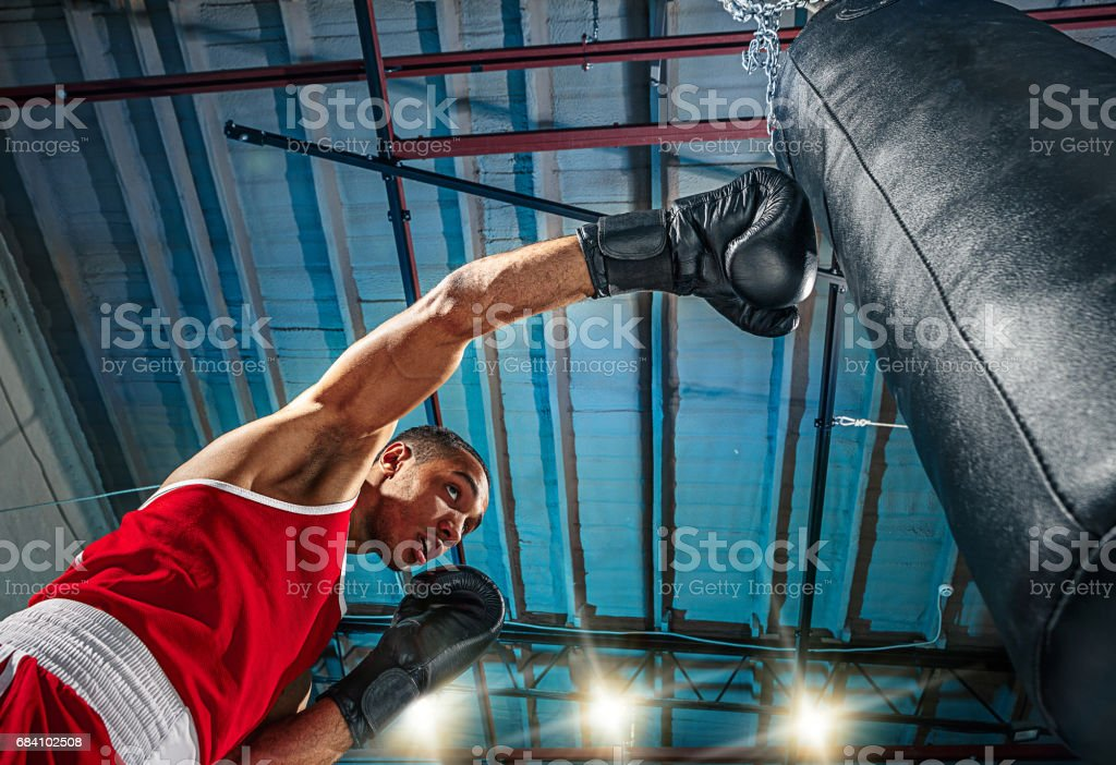 Afro american male boxer stock photo