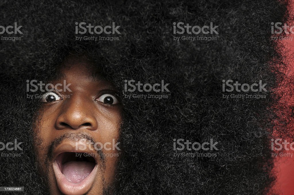 Afro Shock (XL) royalty-free stock photo