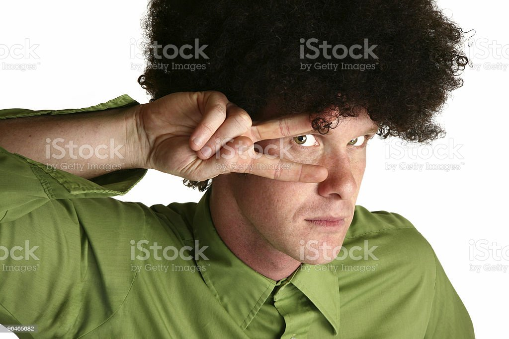 Afro Wig royalty-free stock photo