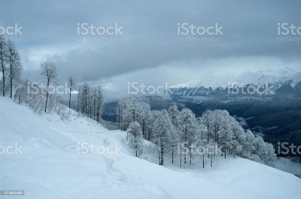 after snow storm, near Sochi royalty-free stock photo