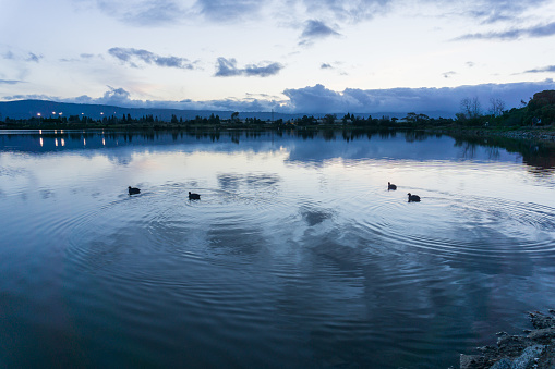 istock After sunset landscape at Shoreline Lake Park, Mountain View, Silicon Valley, San Francisco bay, California 1092391814