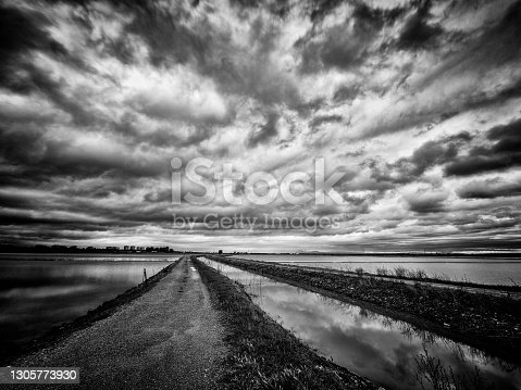 istock After the rain 1305773930