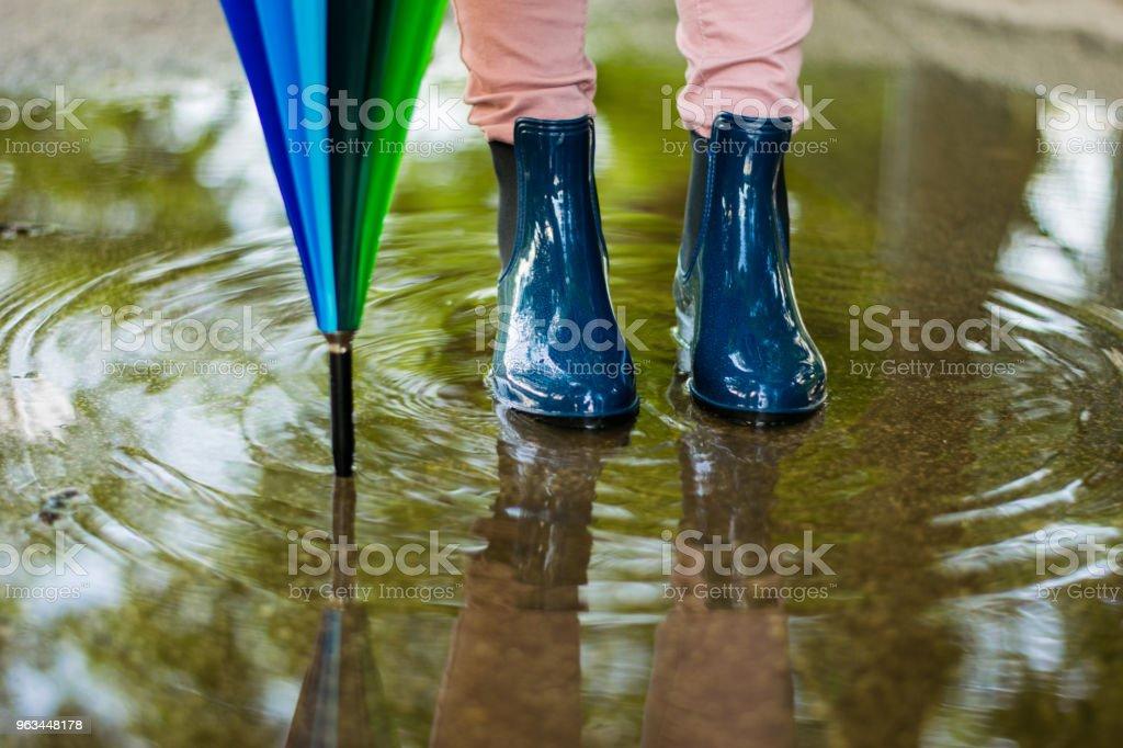 Po deszczu - Zbiór zdjęć royalty-free (Deszcz)