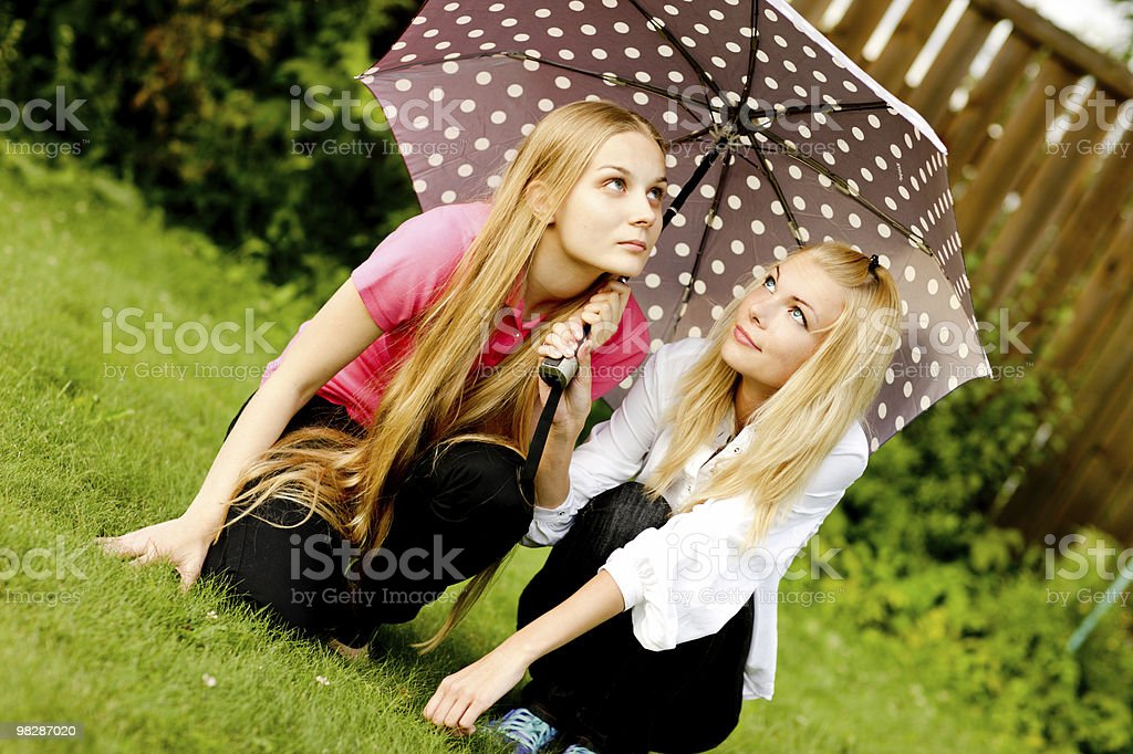 After the rain  sun royalty-free stock photo