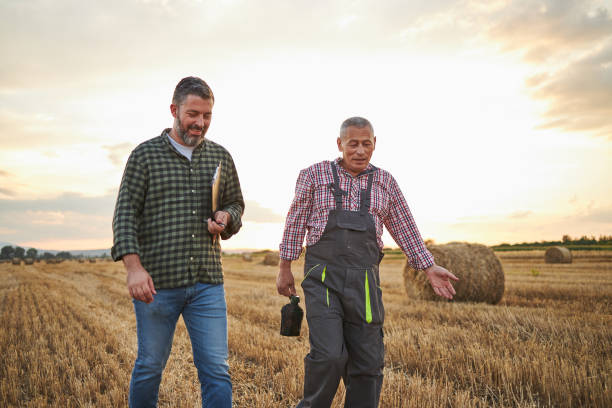 After they checked a quality of hay contented father and son going home stock photo