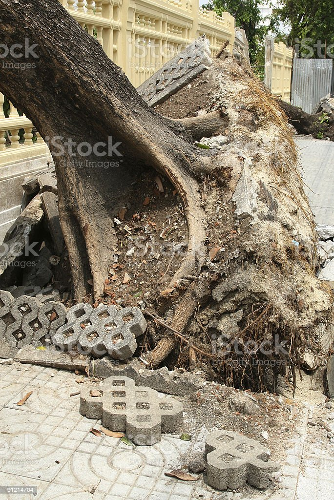 Aftermath 3 royalty-free stock photo