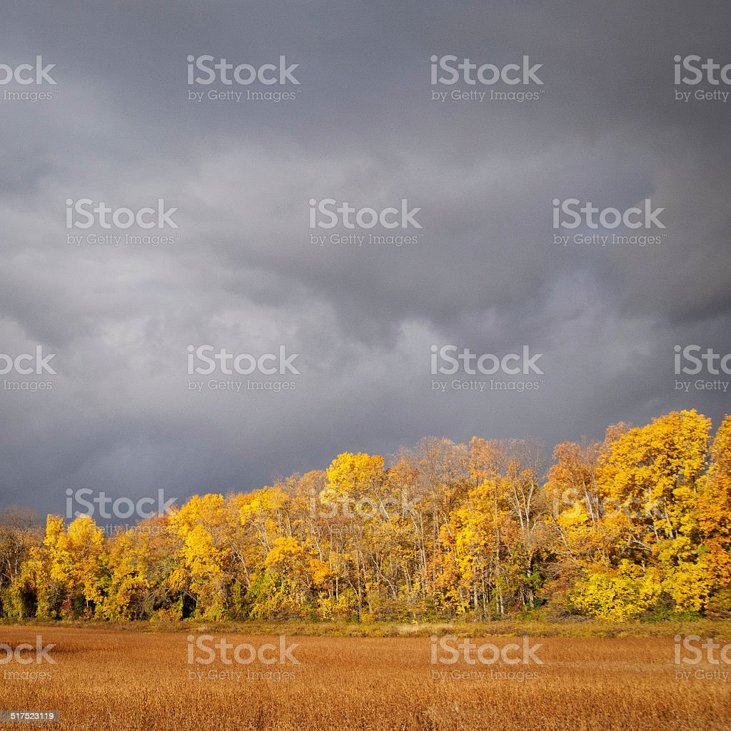 Aftermath of a rainstorm near Barrie, Ontario stock photo