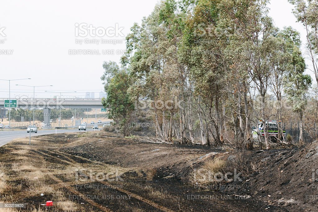 Aftermath of the Epping Bushfires stock photo