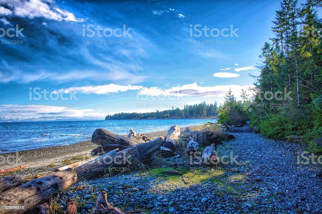 Afternoon at a Beach in Northern Vancouver Island stock photo