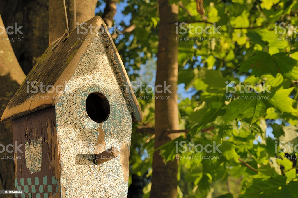 Afternoon Birdhouse royalty-free stock photo
