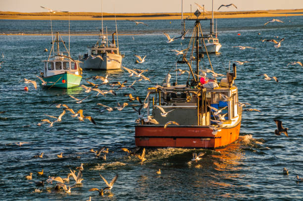 afternoon in chatham - fishing boat imagens e fotografias de stock