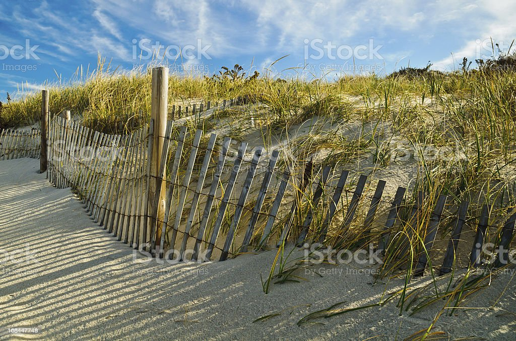 Afternoon in the Dunes stock photo