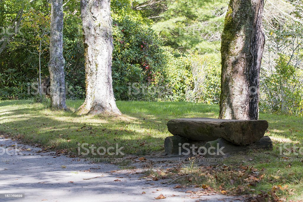 Afternoon in the Park royalty-free stock photo