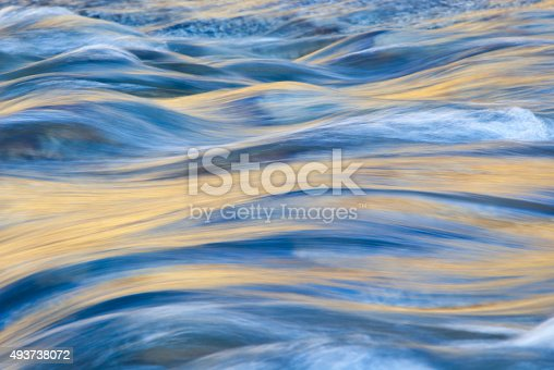 Golden afternoon light reflected on the surface of a stream