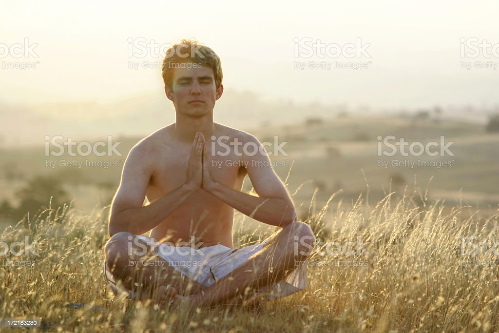 Afternoon Meditation royalty-free stock photo