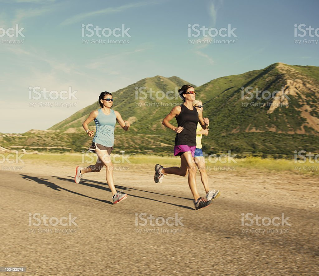 Afternoon Run royalty-free stock photo