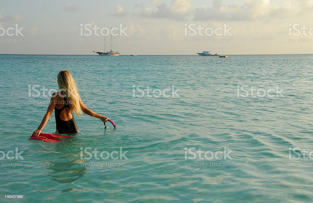 Afternoon snorkelling stock photo