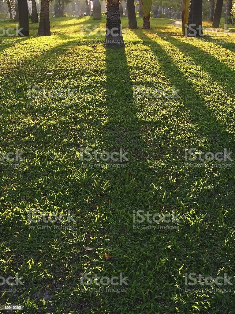 Afternoon Sun Casting Shadows stock photo