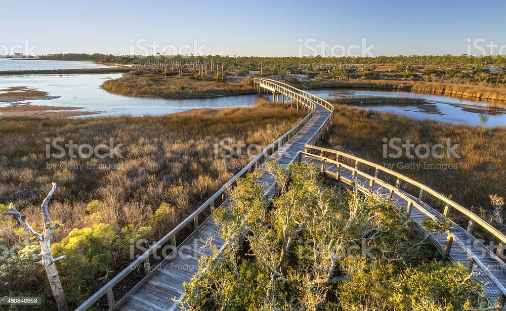 Afternoon Sun on Big Lagoon Boardwalk stock photo