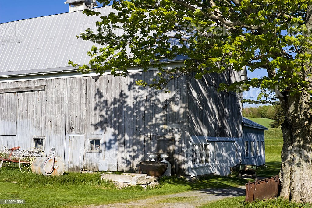 Afternoon Sunlight on New York State Barn in Spring. royalty-free stock photo